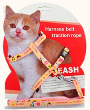 New Design Adjustable Nylon Rope Pet Cat Collar Cat Lead Leash Cat Harness Leash For Cats(China (Mainland))
