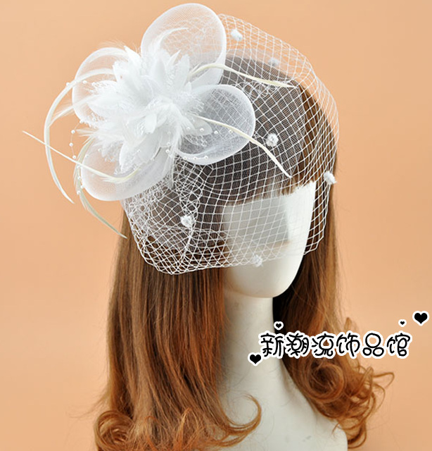 Free Shipping Hot Sale White Black Red Birdcage Net Wedding Bridal Fascinator Face Veils Feather Flower with Hairpins(China (Mainland))