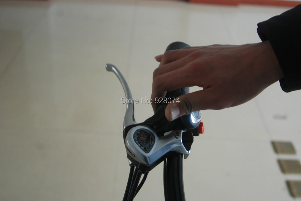 ZT G1103 Folding electric bicycle folding electric bike 250w motor aluminum frame portable smart lithium battery