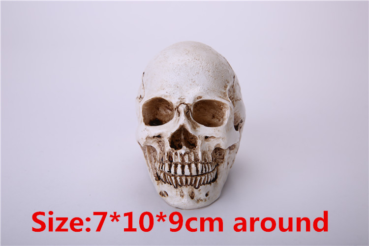 Anatomical Skull Implant Model Anatomia Orgrimmar Hot Sale small Human Skull Horror Scary Humen Tibet Skeleton cool reality new(China (Mainland))