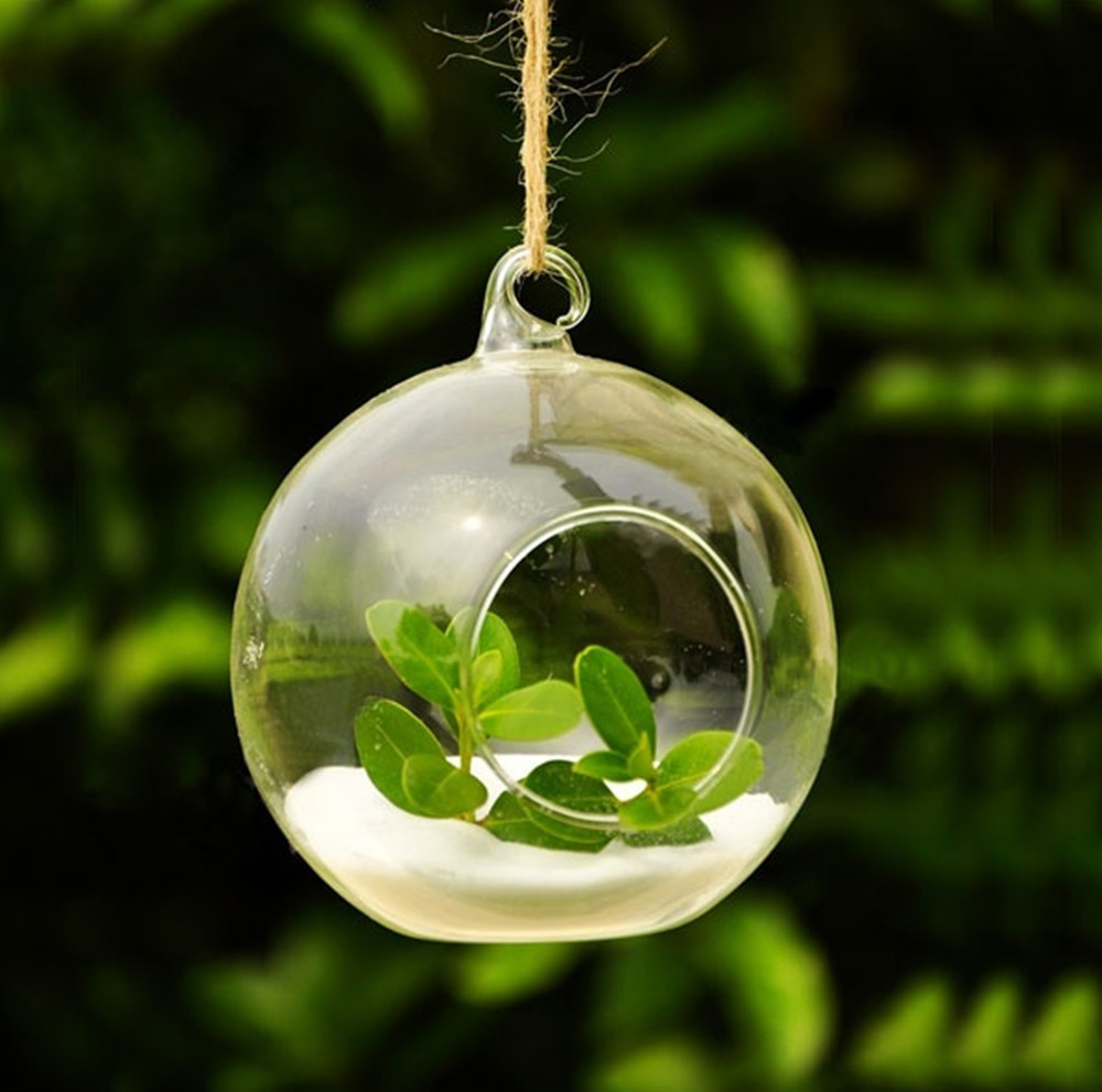 Crystal Glass Hanging Planter Vase Clear Glass Ball Flower Pots Size M Diameter 10cm For Home, Office, Yard Decoration(China (Mainland))
