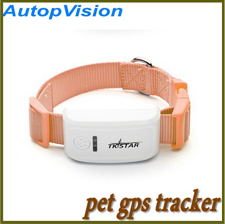 Sure Gps Cat Tracker Uk