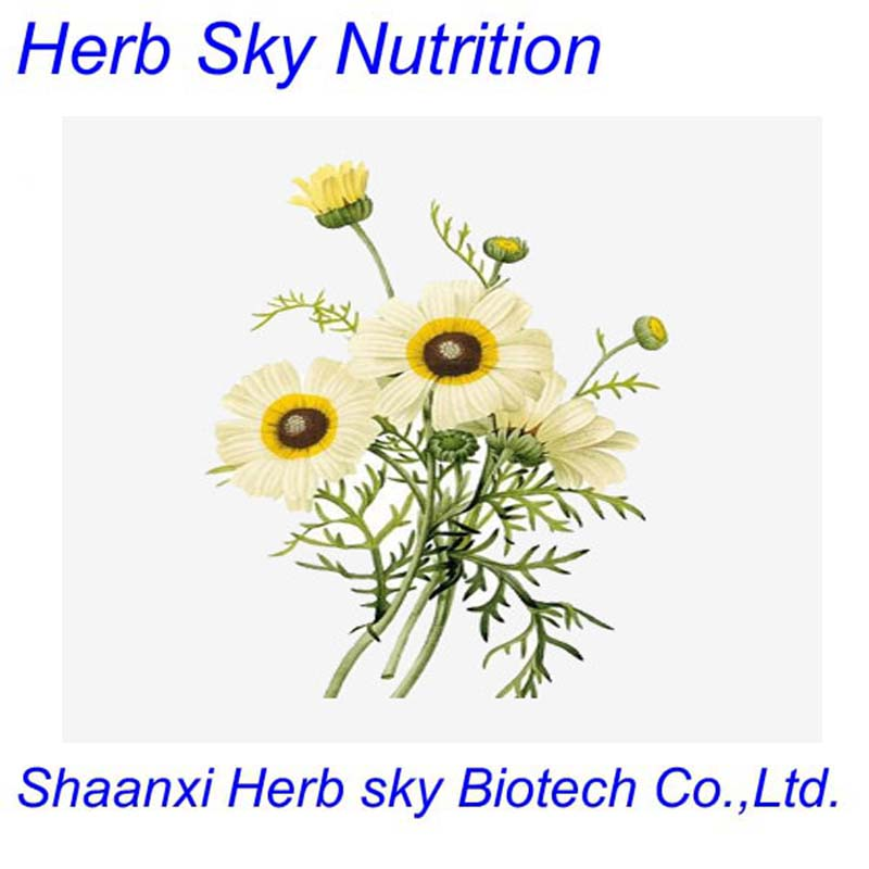 Halal&amp;Kosher German Chamomile Extract,High Quality Chamomile Flower Extract Powder 500g/lot<br><br>Aliexpress