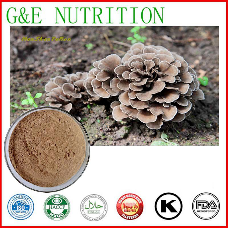 High Quality Maitake Mushroom Extract / Grifola frondosa Extract Powder 700g/Lot<br><br>Aliexpress
