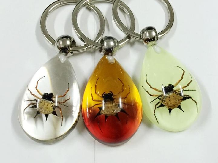 free shipping 48 pcs insect key ring specimens creative Real spider mix color keychain<br><br>Aliexpress