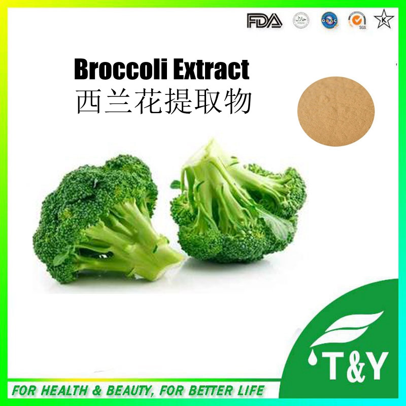 China supply 100% natural quality fresh broccoli extract 800g/lot<br><br>Aliexpress
