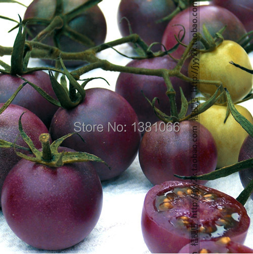 Гаджет  Free shipping Black pearl nutritional content of fruit tomato None Дом и Сад