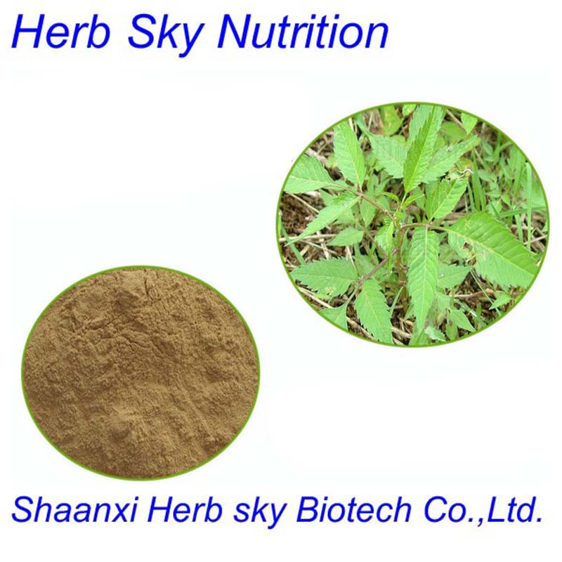 Organic Sticktight Extract 10:1 For Health Care 400g/lot<br><br>Aliexpress