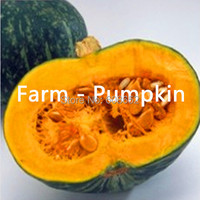 Edible - chalet / pumpkin on the 1st - vegetables, watermelon and melon seeds (seeds) package home garden - free shipping