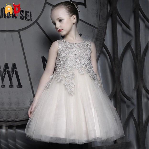 AD Elegant Baby Girls Dress Princess Design Well-made Brand Baby Girls Party Dress Tutu Delicate Baptism Birthday Baby Dress<br><br>Aliexpress