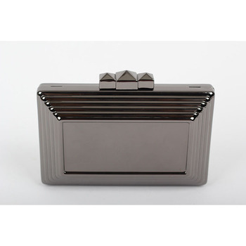 Women's Nude Metal Clutch