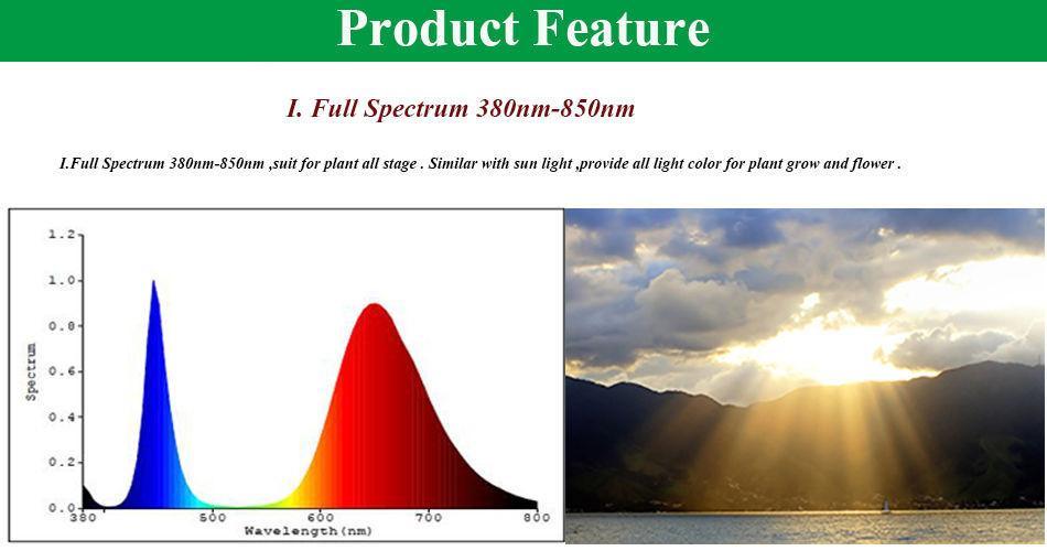 50 Watt COB LED-Vollspektrum-Fluter / 380nm-840nm Pflanzenleuchte