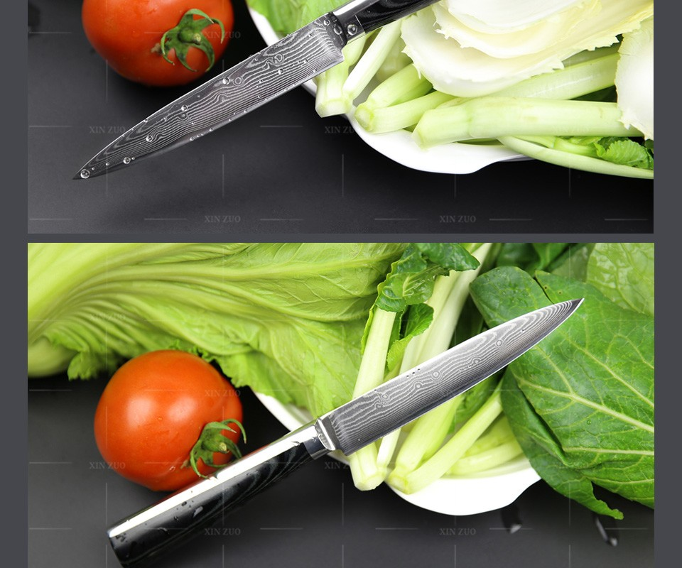 Buy 5 pcs chef knife set 73 layers Japanese VG10 Damascus kitchen knife cleaver bread utility knife Micarta handle free shipping cheap