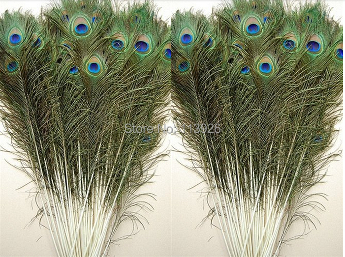 Buy wholesale price 200pcs lot 25 30cm for Where can i buy peacock feathers craft store