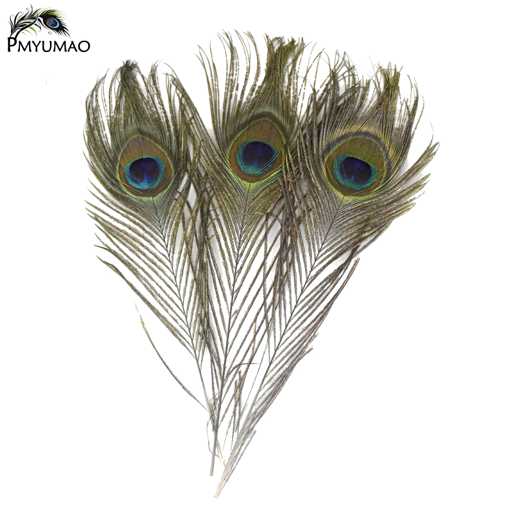 Compare prices on peacock feather crafts online shopping for Where can i buy peacock feathers craft store