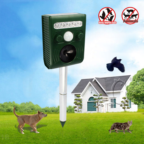 Reject Shop Outdoor Solar Lights: Chinese Goods Catalog