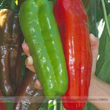 200 Pepper Seeds Giant Marconi Hybrid Sweet Pepper, DIY Home Garden Vegetable Plant(China (Mainland))