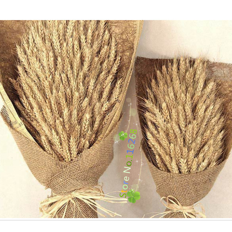 Как сделать колос пшеницы и из чего