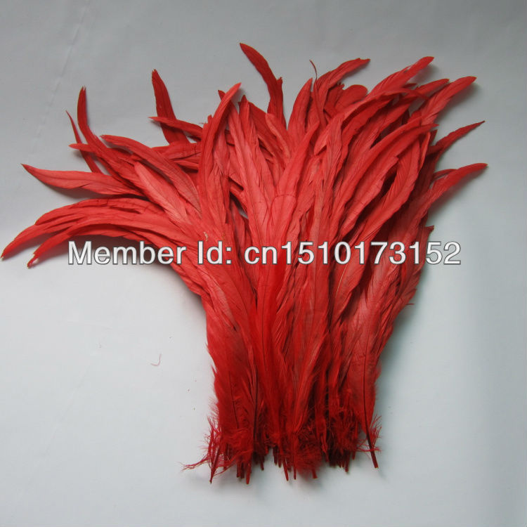 10lot 14-16''/35-40cm Red Dyeing Loose Rooster Tail Feathers Trims Dress/Masks GJ2-5 - TiTi Feather Market store
