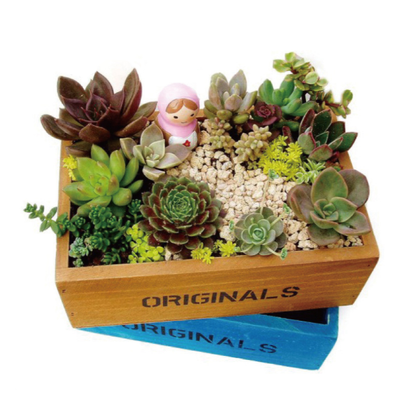 vintage style wood flower pots for flowers succulents bonsai planter macetas flowerpot garden