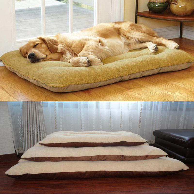 Medium Dog Bed Cushions Cheap
