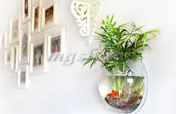 Free Shipping 1piece Acrylic Wall Mounted Fish Tank Wall