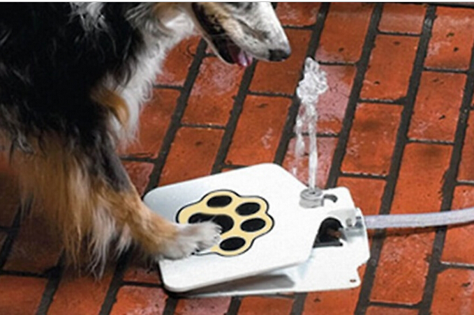 Automatic Outdoor Pet dog Water Fountain Flesh Step Spray Puppy Dog Cat Paw Drinking pet Supplies
