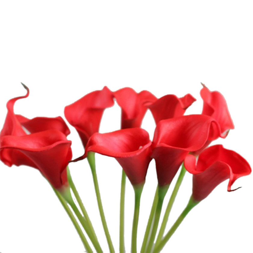 Calla lily coupons