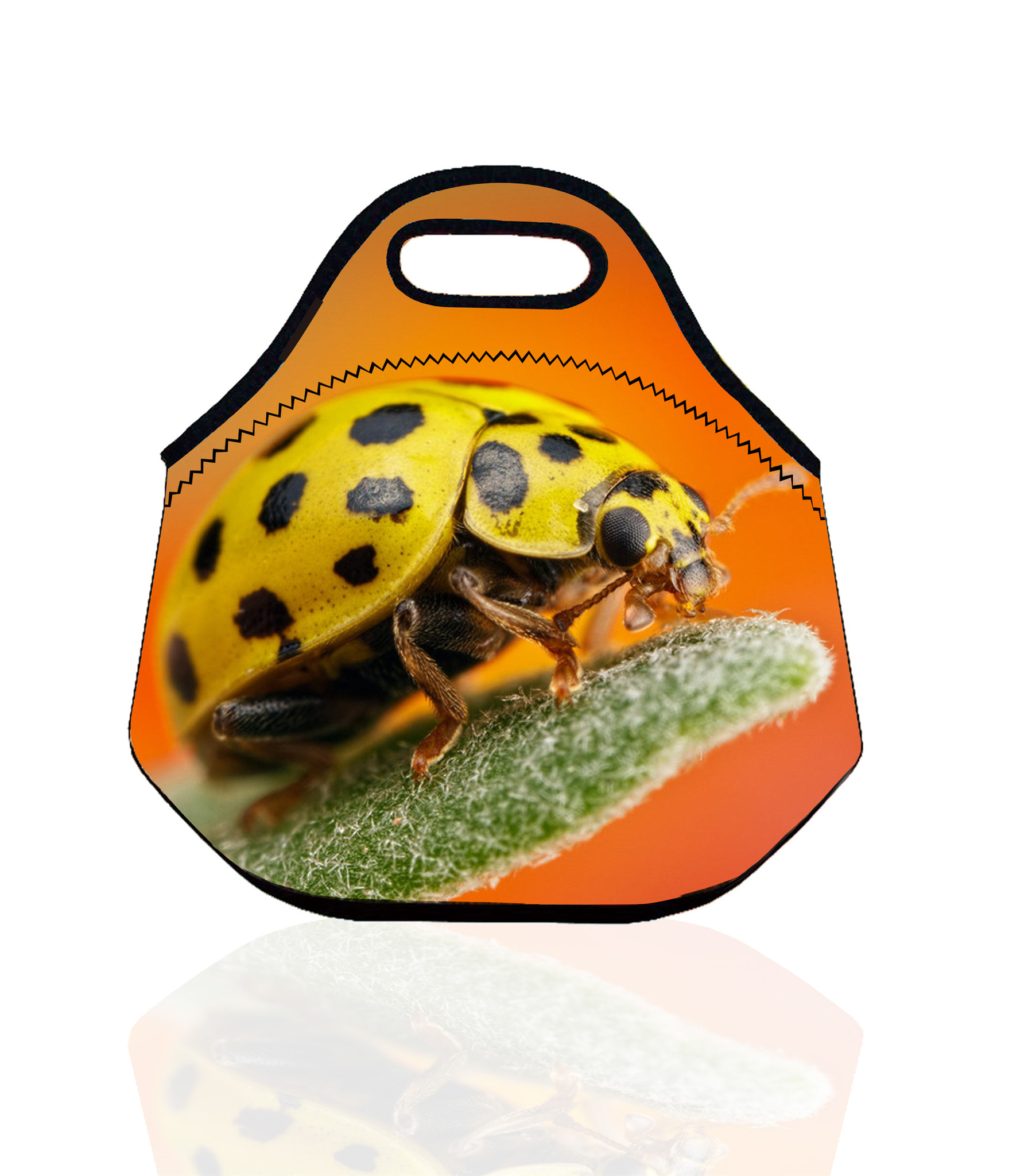 Neoprene Thermal Insulated insect Lunch Bag for Women Kids storage bags Tote lunch box Insulation Bag bolsa termica(China (Mainland))