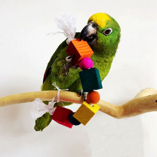 Pet Bird Parrot Toys Colorful Wooden Blocks Case Biting String Toy For Lovely Parakeet Canary Budgie Birds(China (Mainland))