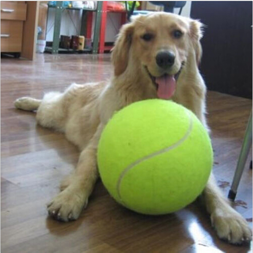24 CM Giant Tennis Ball For Pet Chew Toy Big Inflatable Tennis Ball Signature Mega Jumbo Pet Toy Ball Supplies Outdoor Cricket(China (Mainland))
