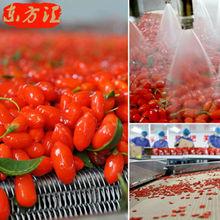 AAAAAA grade Wolfberry Chinese Ningxia Medlar goji berry herbal tea Health tea goji berries Gouqi in
