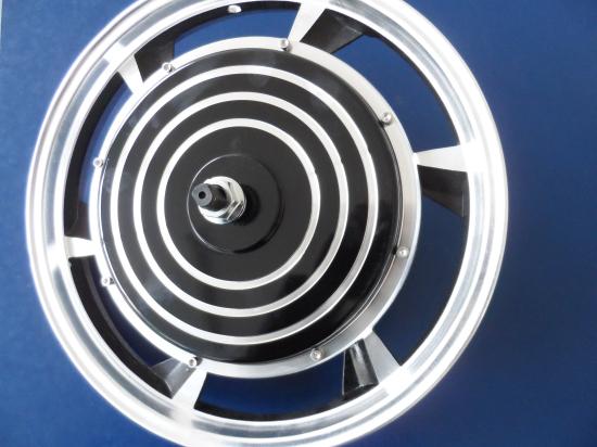 Free DHL shipping 3pcs/lot E-bike 16inch hub motor 48Volt 1000W Brushless DC Hub Motor for Rear Wheel E-bike/Electrical Bicycle(China (Mainland))