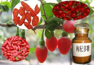 1kg 10:1 Wolfberry Extract<br><br>Aliexpress