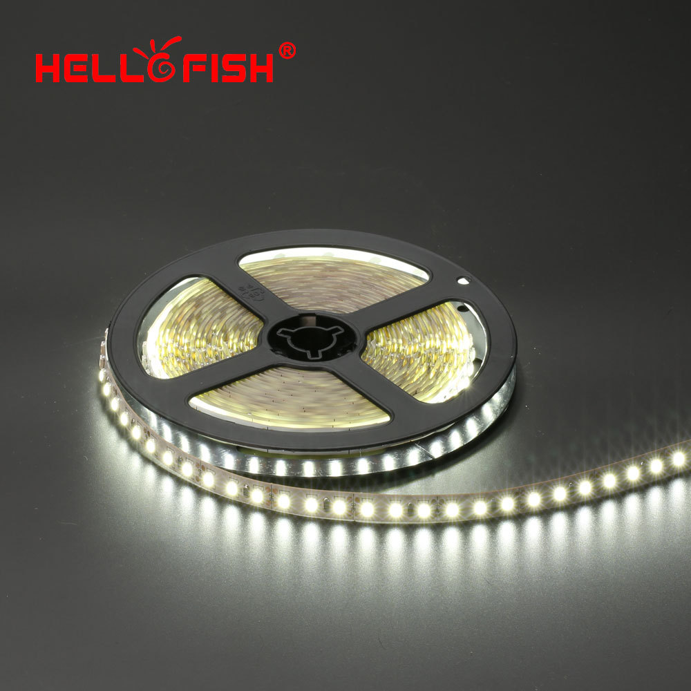 Hello Fish 5m Single Layer PCB 600 LED Strip Light, 2835 SMD 12V Flexible LED Tape, White/Warm White(China (Mainland))