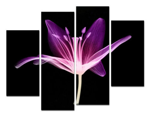 product X-Ray Flower Modern Wall Art On Gallery Canvas Oil Painting no frames