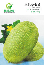 Buy Fruit seeds Three color hami melon seeds Sweet melon netted melons cooked meat thick early 10 grams for $18.99 in AliExpress store