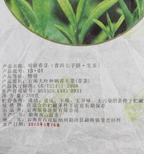 Spring Tea Bud Pu er Yunnan White Tea Chinese Te Puer 200g High Quality Tea Cha