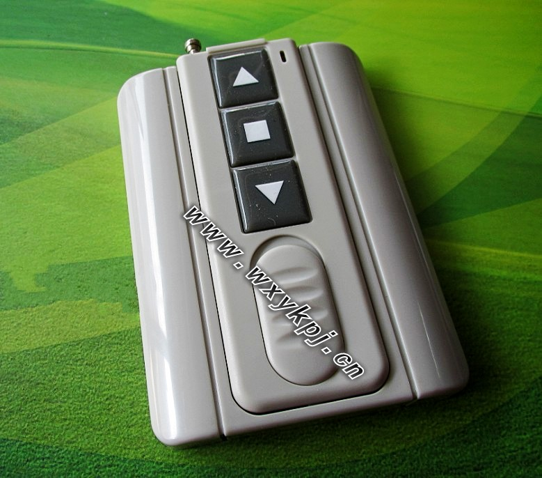 Ultra-thin key belt remote control , delta-type button excellent(China (Mainland))