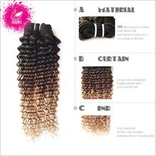 9А Малайзии Девы Волос 4 Связки Малайзии Вьющиеся Волосы Переплетения Глубоко Вьющиеся Ombre Плетение Волос Расширение 1B/4 27 Вьющиеся Волосы Пучков