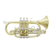 Professional Bb Flat Cornet Brass Instrument with Carrying Case Gloves Cleaning Cloth Grease Brushes(China (Mainland))