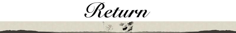 תכשיטי אופנה וינטג ' נראה עתיק ברונזה מצופה טווס חמוד שרשרת תליון עגילים, תכשיטי סטים S064