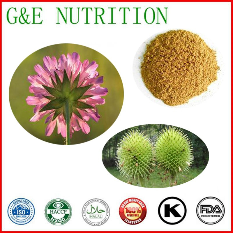 2016 Hot Sale100% natural Teasel Root Plant Extract 10:1 with free shipping 400g<br><br>Aliexpress
