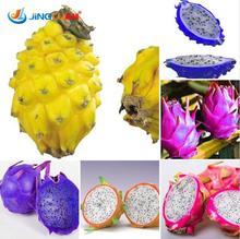 2016 Hot Sale Rainbow Dragon Fruit Seeds Fresh Fruit Seeds Outdoor Bonsai Seed For Homegarden-200pcs,sent Gift For Sakura Seeds