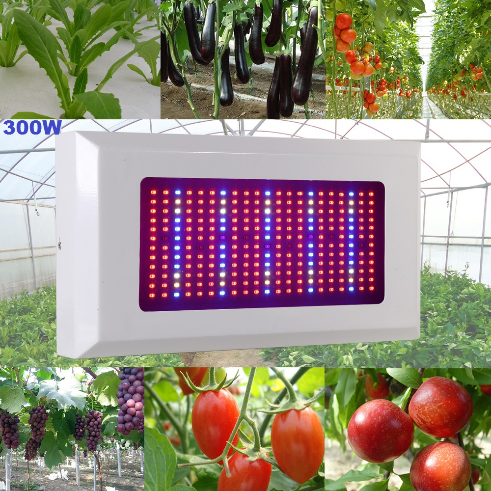 300W AC85-265V Full Spectrum LED Grow Light Lamps 5730SMD 183Red/40Blue/6IR/3UV/10White/10Warm white For Plants &amp; Hydroponics<br><br>Aliexpress