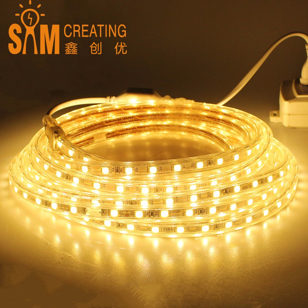Led strip 60leds/m 5050 flexible light 1M/2M/3M/4M/5M/6M/7M/8M/9M/10M/15M/20M AC220V LED tape Waterproof led light+ Power Plug