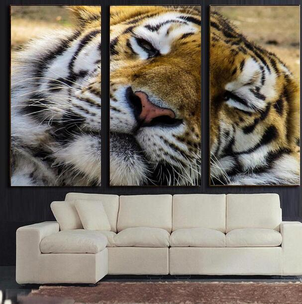 2016 Top Fashion Cuadros New Fashion Home Decals 3d Printing Sleeping Tiger Paintings Living Room 3 Pieces In One Set Pictures(China (Mainland))