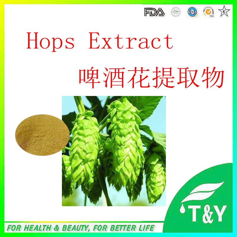 100% Pure Nature Hops Flower Extract  900g/lot<br><br>Aliexpress