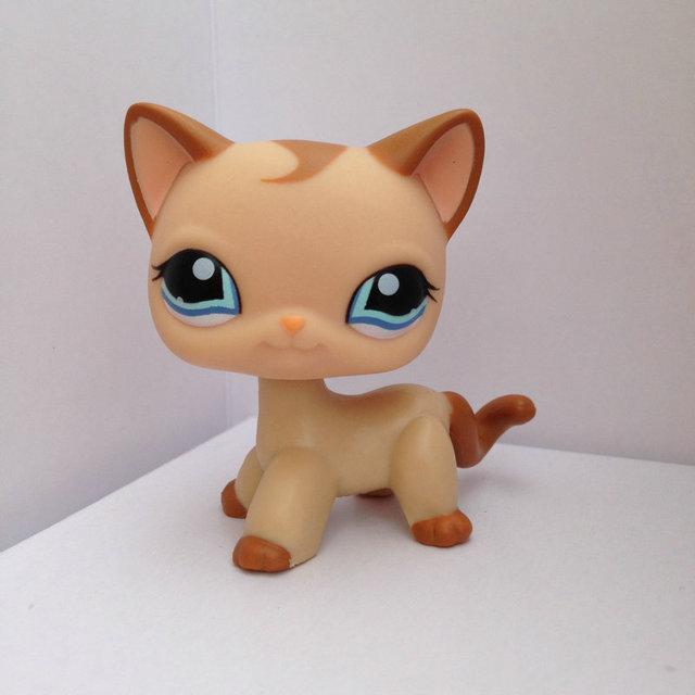 Маленьких животные PET коллекция рисунок для девочки короткие волосы кошка DWA267