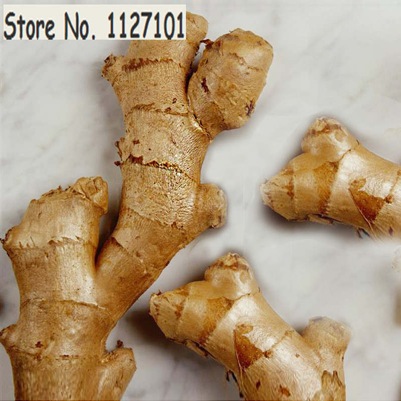 A Pack 100 Pcs Ginger Seeds Balcony Vegetables Potted Bonsai Plant Seeds Four Seasons Zingiber Seeds Plants(China (Mainland))